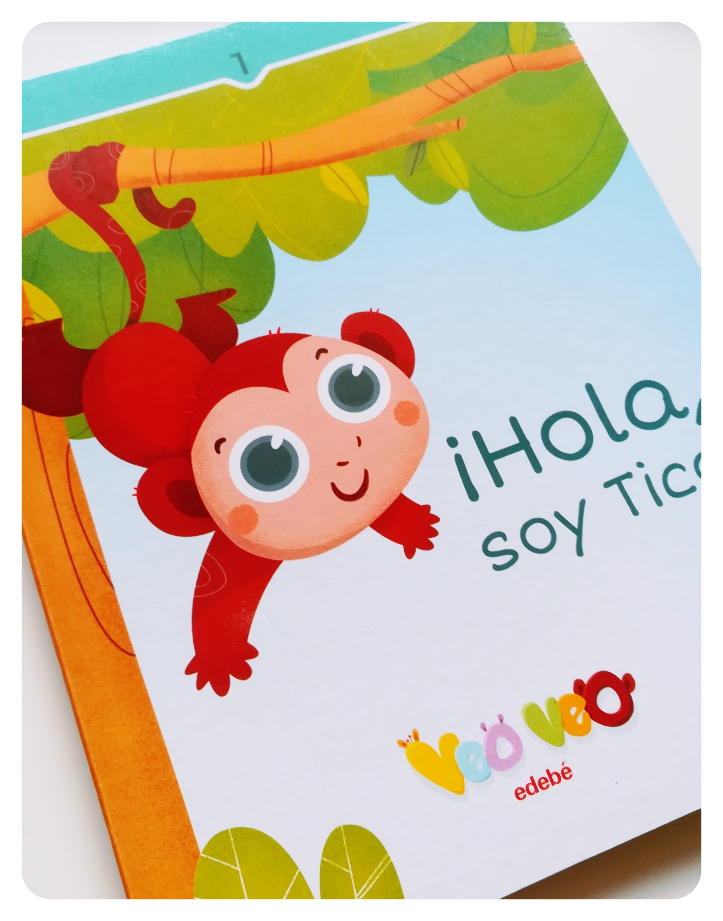 proyecto_veo_veo_editorial_edebe_tico_children_illustration_book_portada