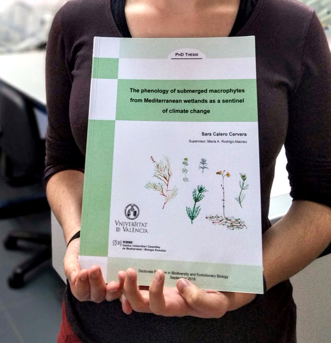 Ilustraciónes para tesis doctoral